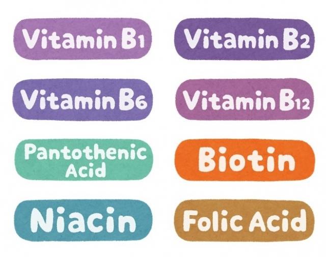 ビタミンBはチームで働く